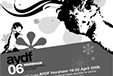 Chris Mason's 2006 AYDF experience