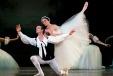 The classical pas de deux a descendance of the 'classical' suite?