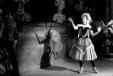 The two Cups of 1962: the dancing horses of The Australian Ballet and the National Theatre