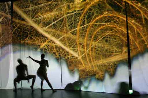 The shadow of two performers moving behind a screen with an image of detailed fibres/leaves projected.
